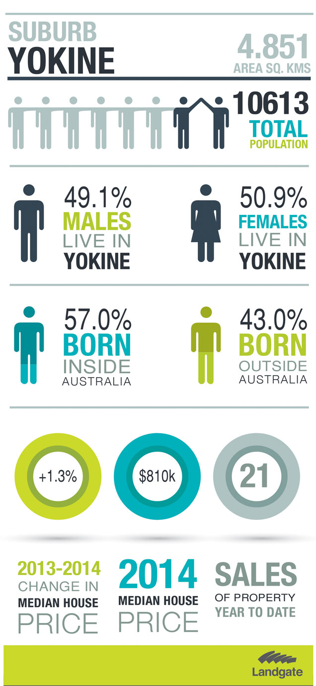 Infographic of Yokine