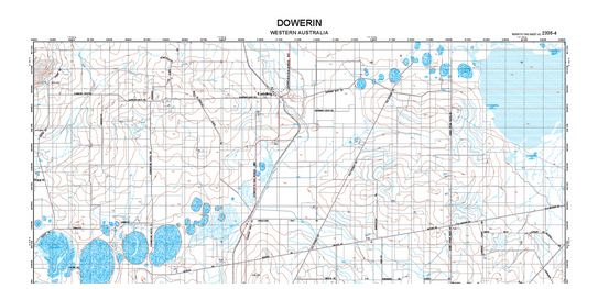 Detailed topographic map of Dowerin, WA